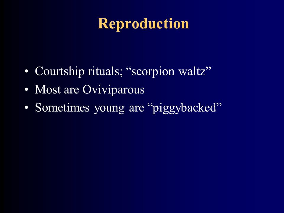 Reproduction Courtship rituals; scorpion waltz Most are Oviviparous