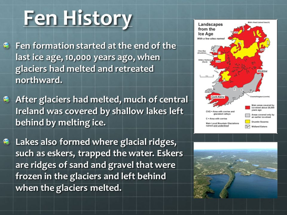 Fen History Fen formation started at the end of the last ice age, 10,000 years ago, when glaciers had melted and retreated northward.