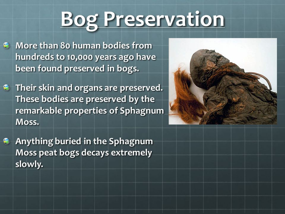Bog Preservation More than 80 human bodies from hundreds to 10,000 years ago have been found preserved in bogs.