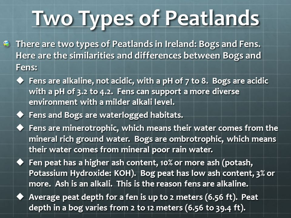 Two Types of Peatlands