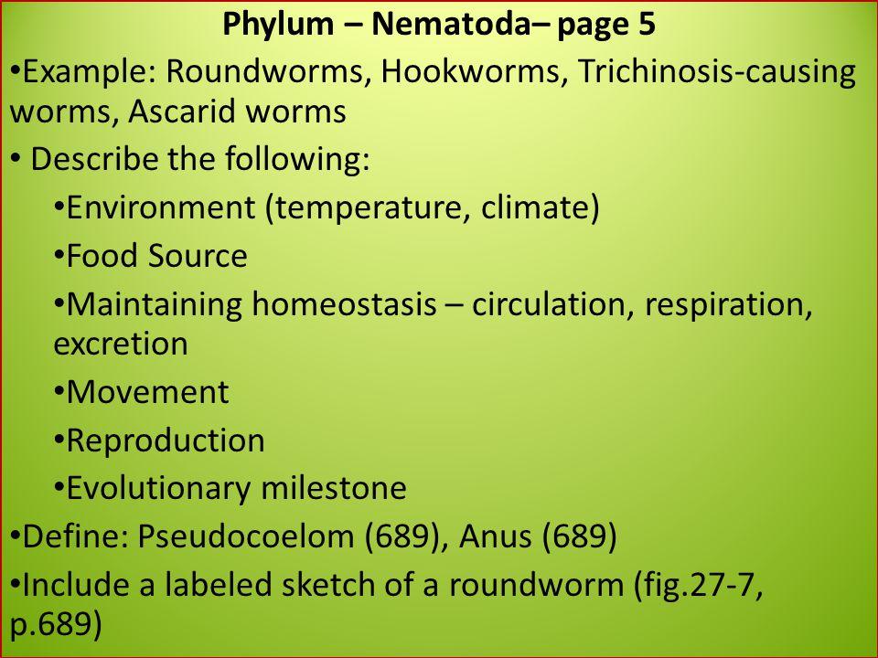 Phylum – Nematoda– page 5