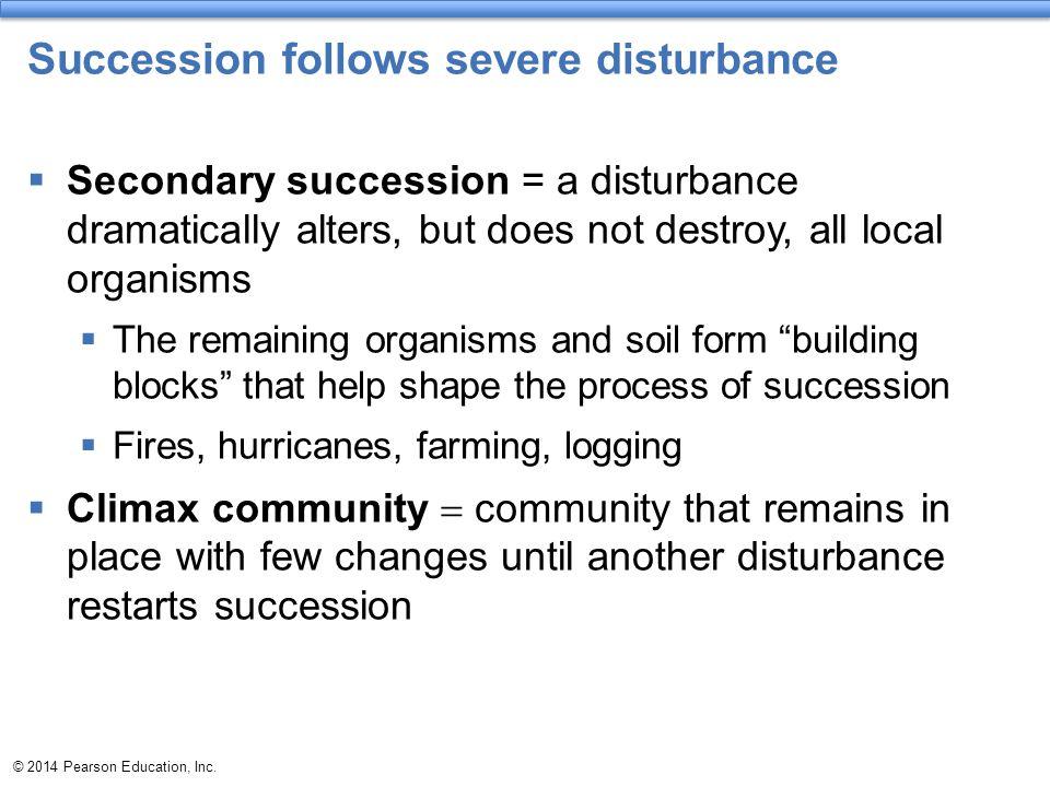 Succession follows severe disturbance