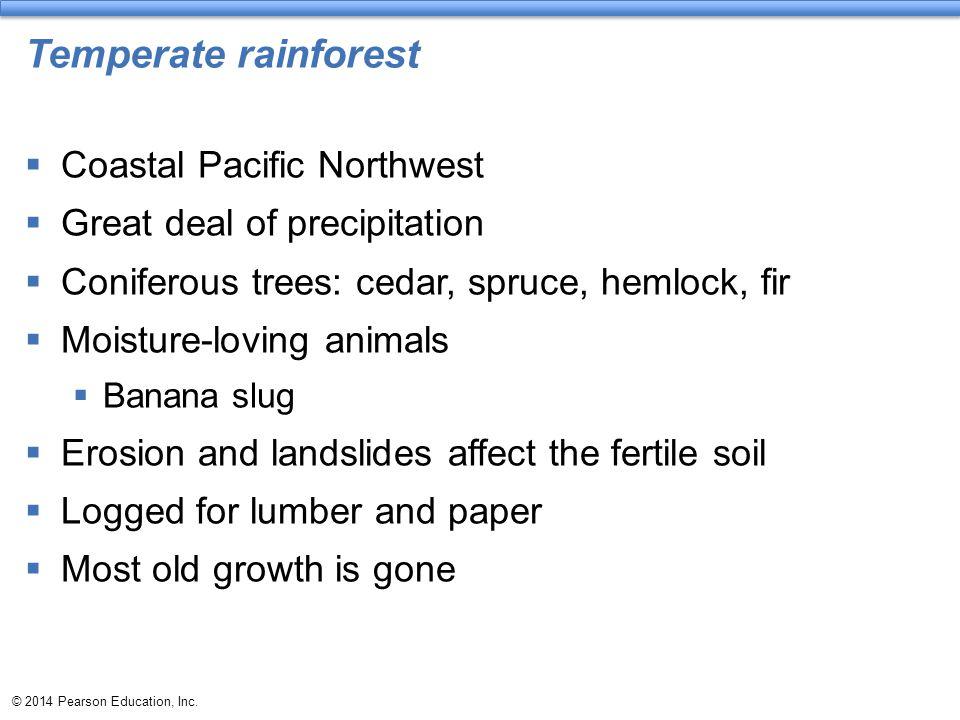 Temperate rainforest Coastal Pacific Northwest