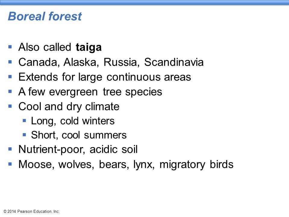 Boreal forest Also called taiga Canada, Alaska, Russia, Scandinavia