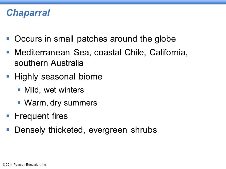 Chaparral Occurs in small patches around the globe