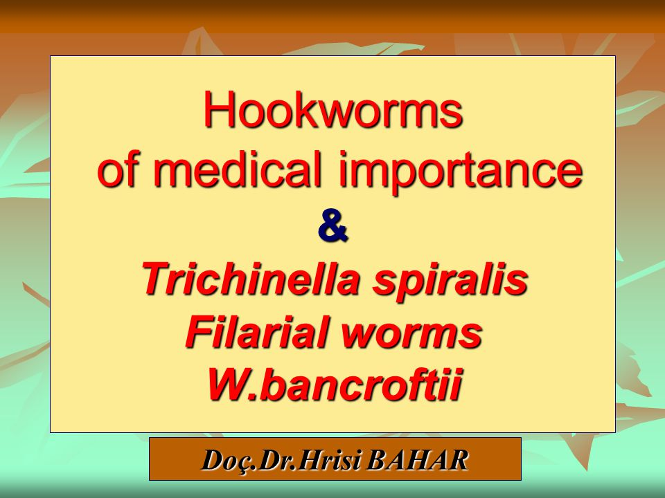 Hookworms of medical importance & Trichinella spiralis Filarial worms W.bancroftii