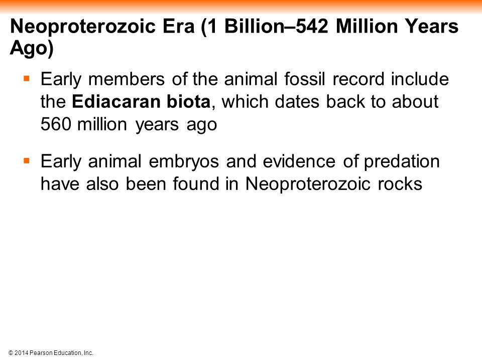 Neoproterozoic Era (1 Billion–542 Million Years Ago)