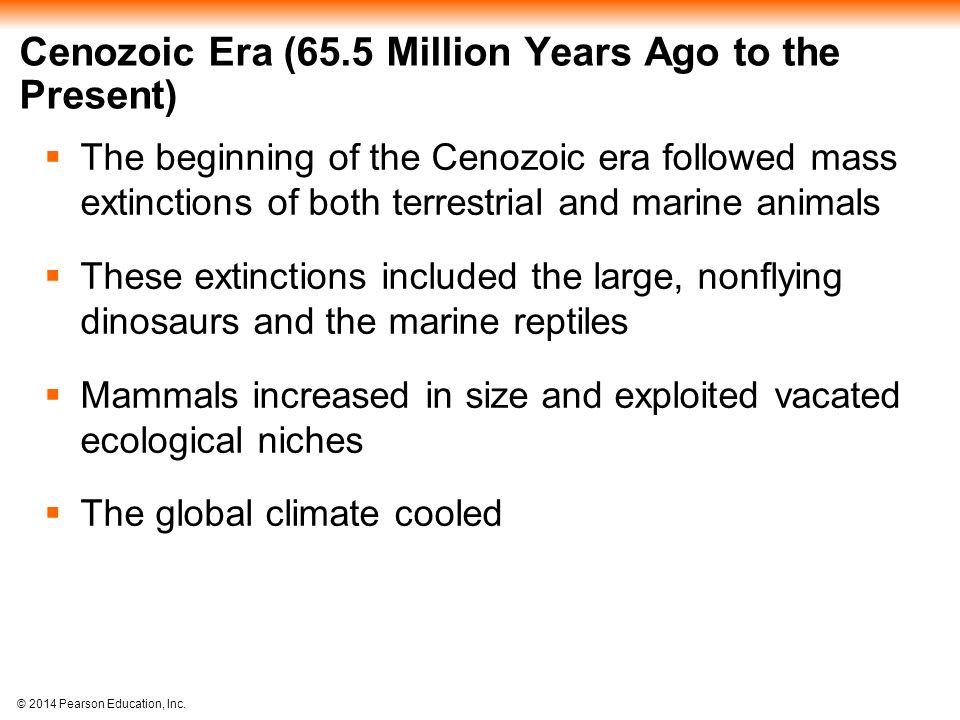Cenozoic Era (65.5 Million Years Ago to the Present)