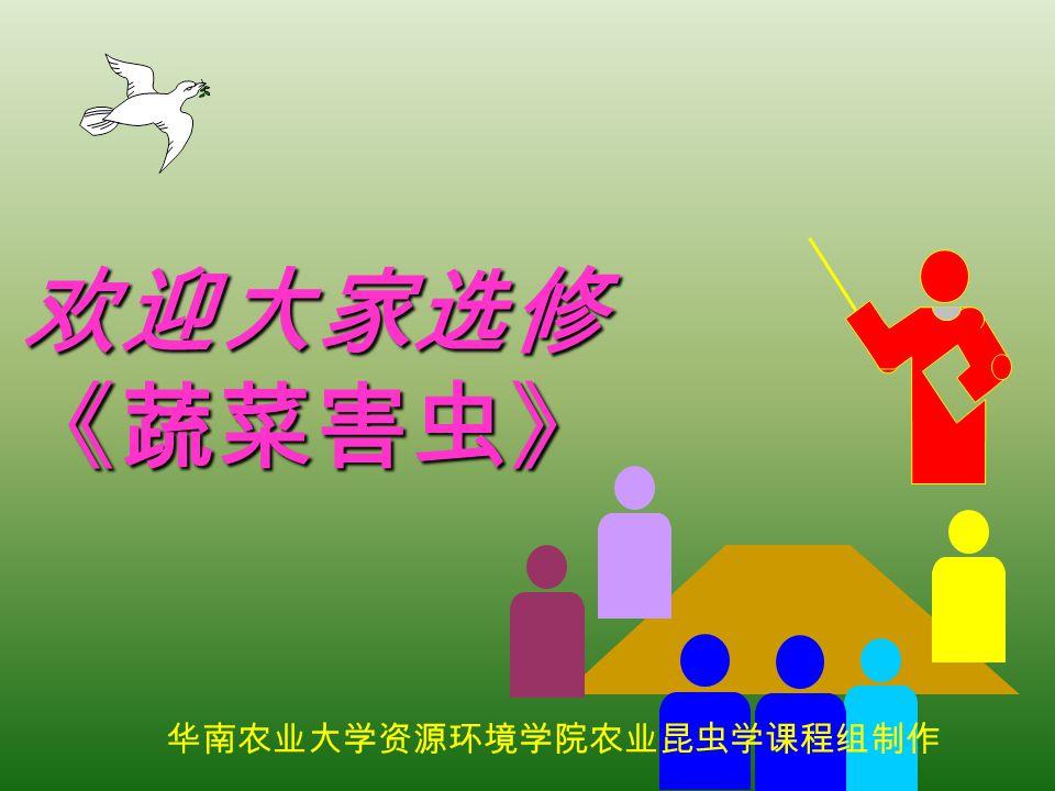 华南农业大学资源环境学院农业昆虫学课程组制作