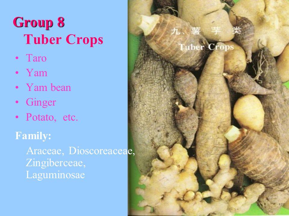 Group 8 Tuber Crops Taro Yam Yam bean Ginger Potato, etc. Family: