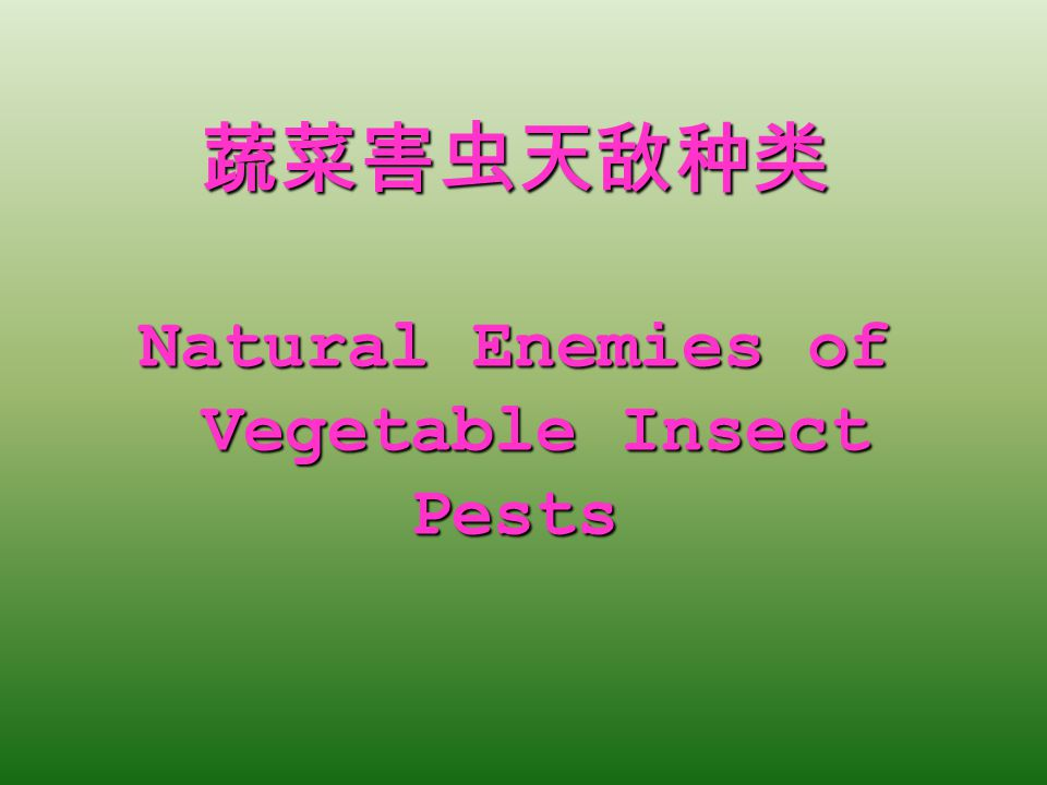 蔬菜害虫天敌种类 Natural Enemies of Vegetable Insect Pests