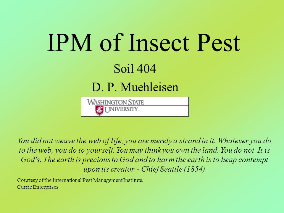 IPM of Insect Pest Soil 404 D. P. Muehleisen