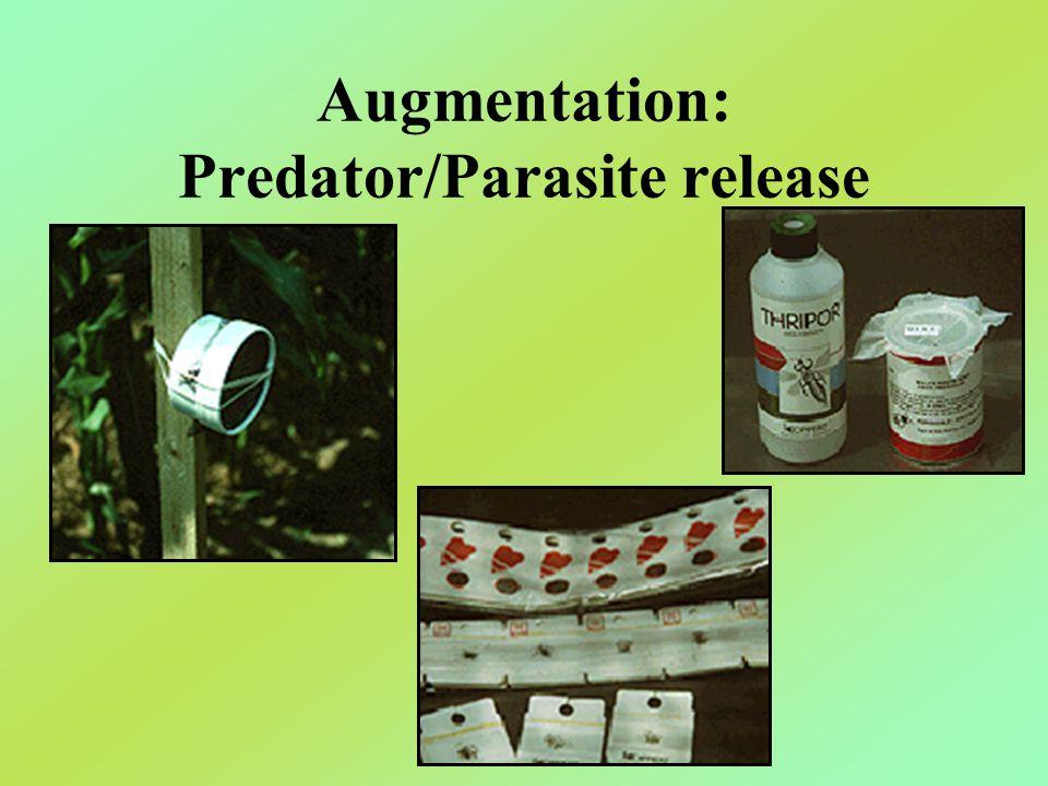Augmentation: Predator/Parasite release