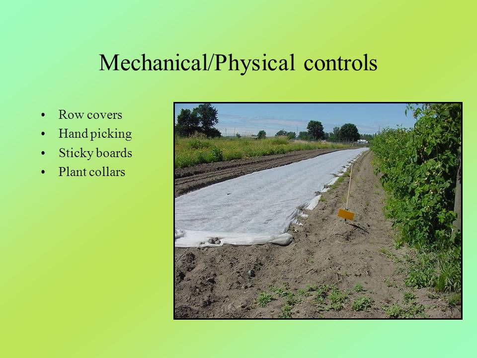 Mechanical/Physical controls