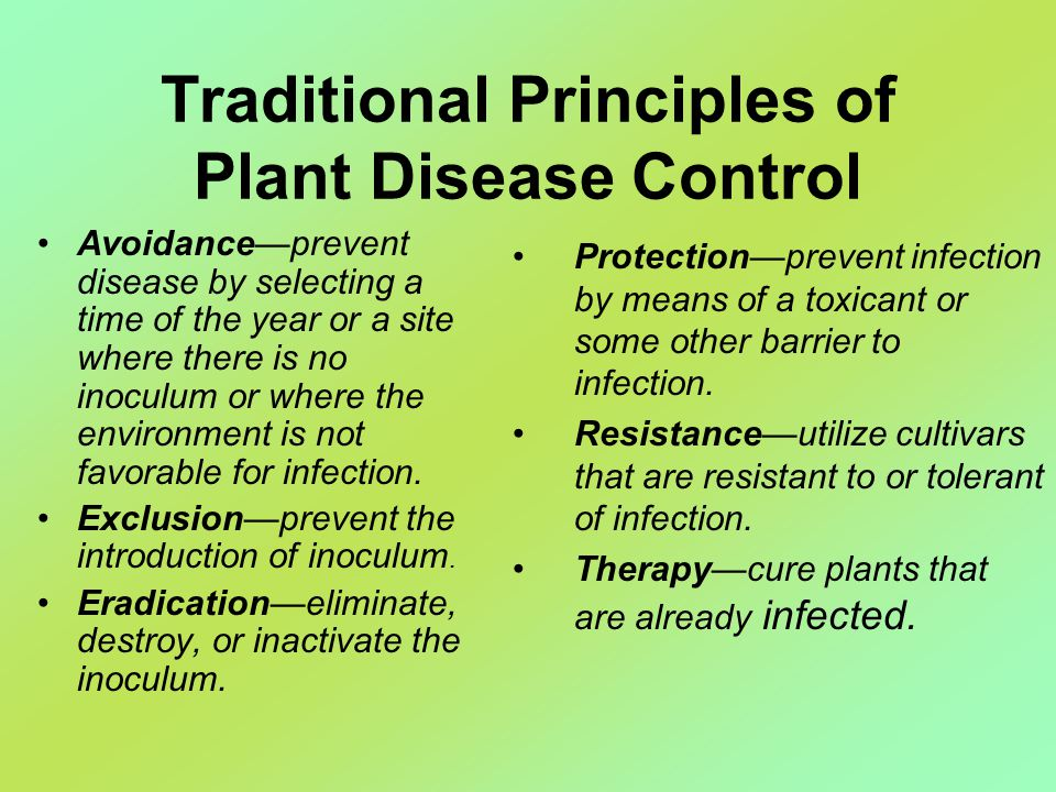 Traditional Principles of Plant Disease Control