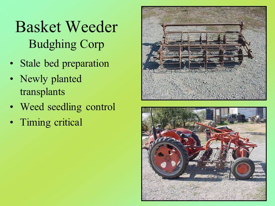 Basket Weeder Budghing Corp