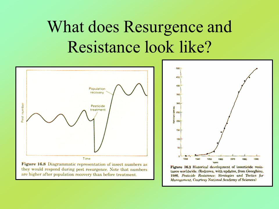 What does Resurgence and Resistance look like