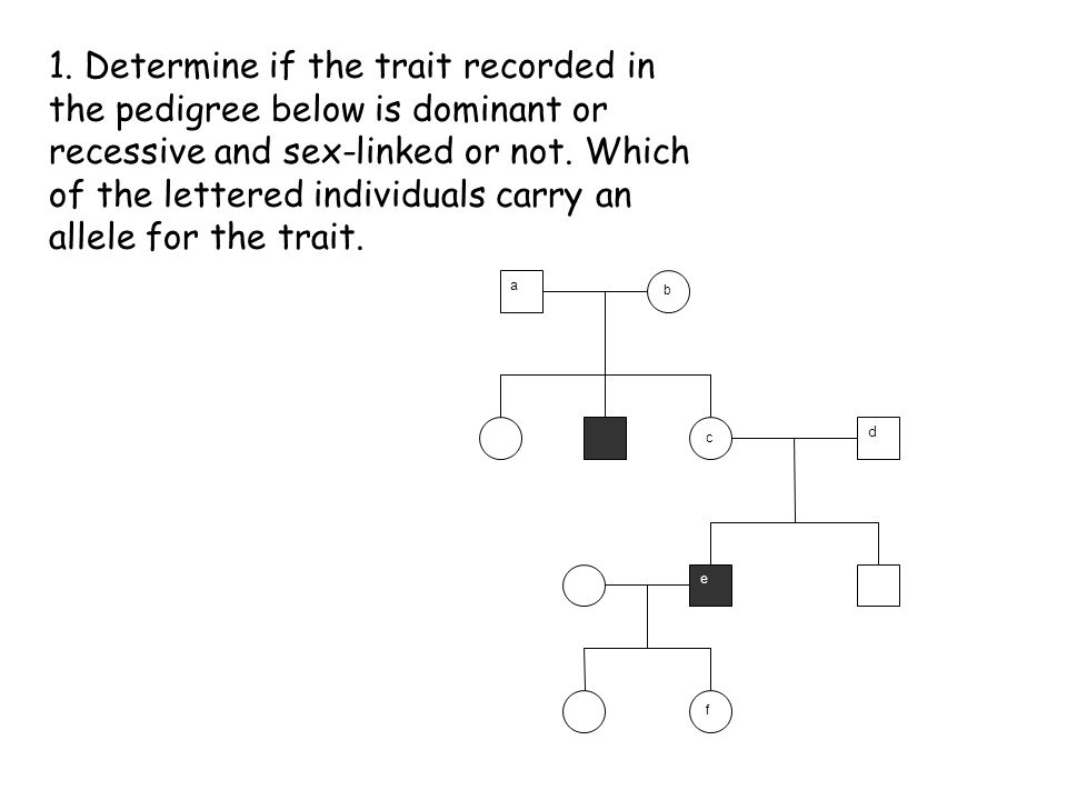 1. Determine if the trait recorded in the pedigree below is dominant or recessive and sex-linked or not. Which of the lettered individuals carry an allele for the trait.