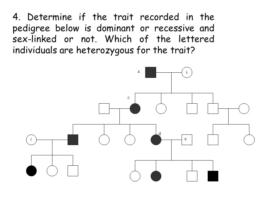 4. Determine if the trait recorded in the pedigree below is dominant or recessive and sex-linked or not. Which of the lettered individuals are heterozygous for the trait