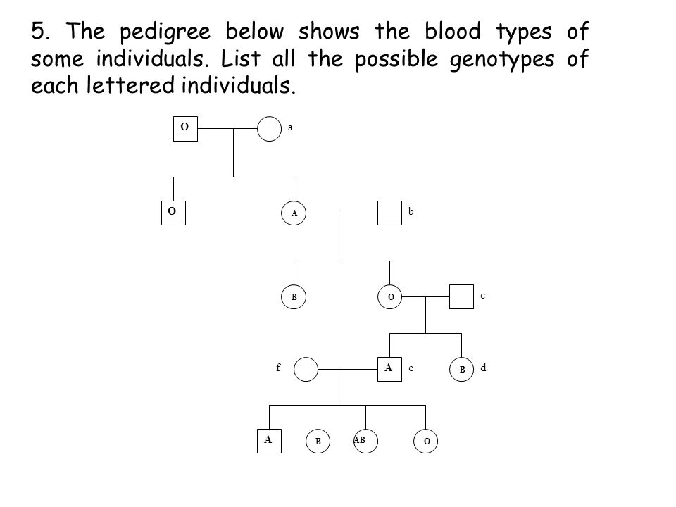 5. The pedigree below shows the blood types of some individuals