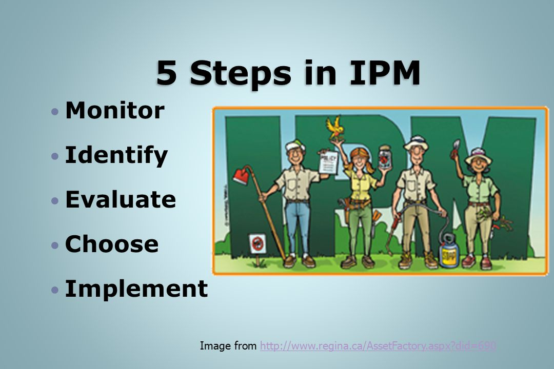 5 Steps in IPM Monitor Identify Evaluate Choose Implement