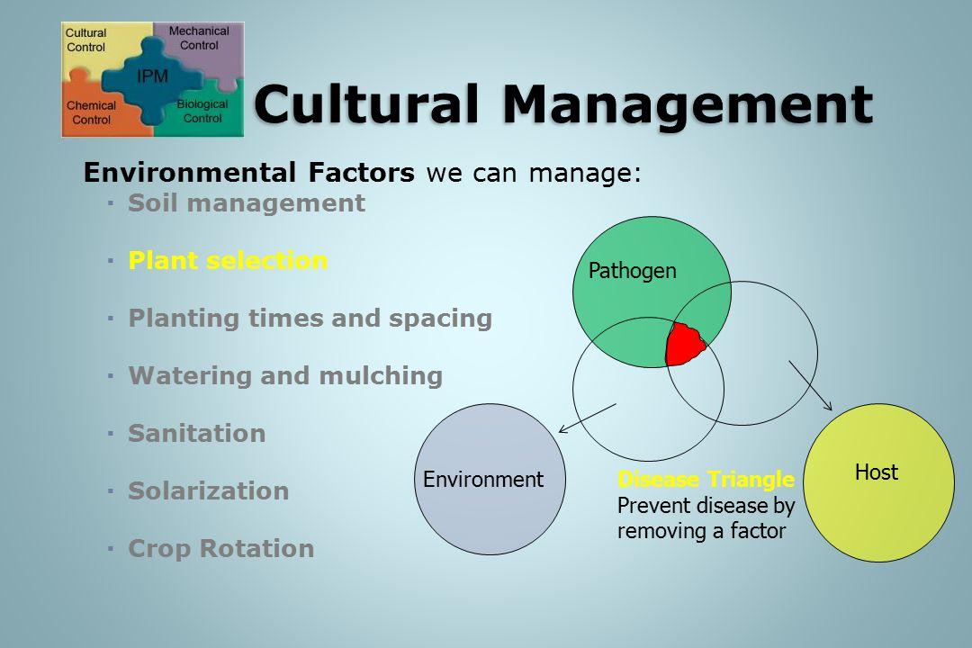 IPM: Cultural Management
