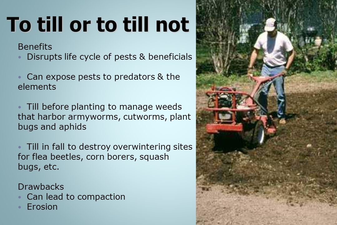 To till or to till not Benefits