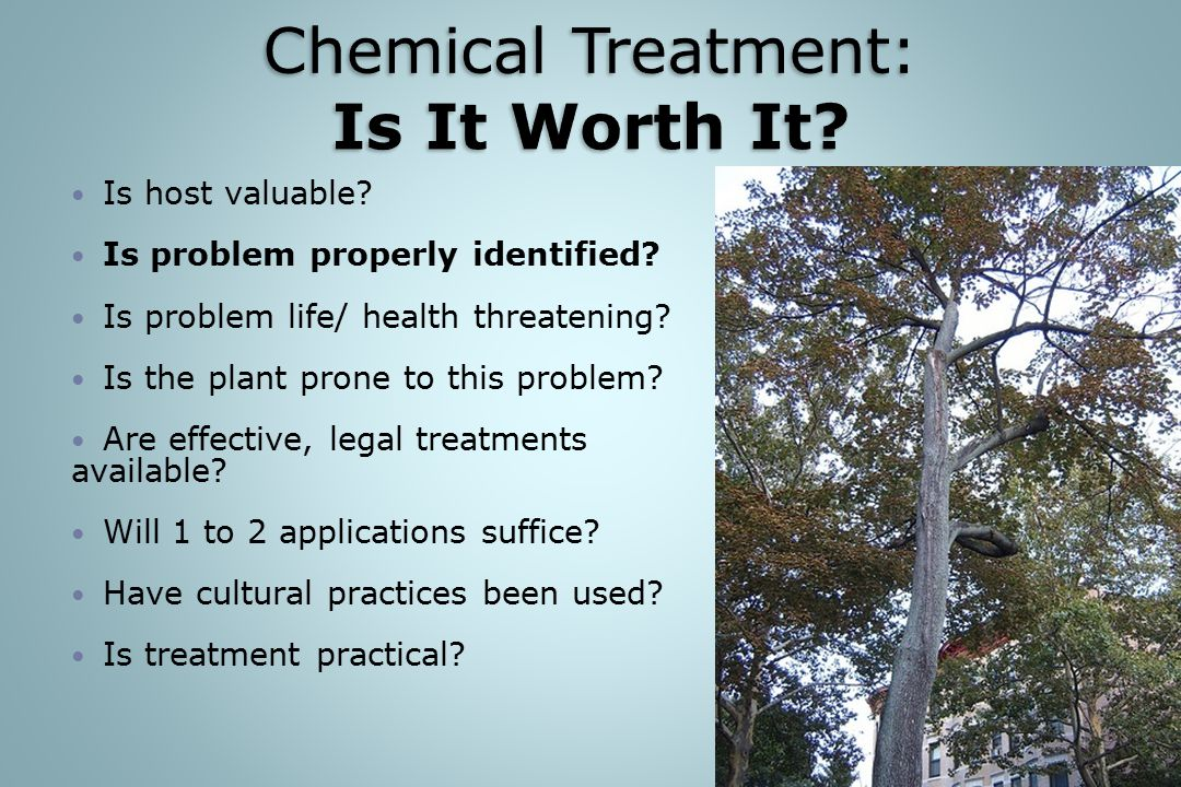 Chemical Treatment: Is It Worth It