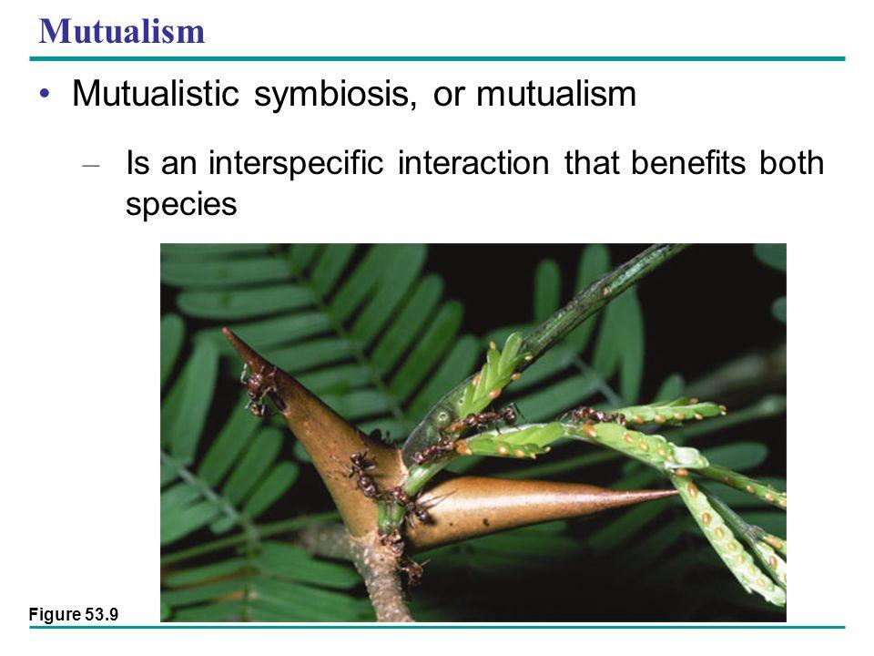 Mutualistic symbiosis, or mutualism