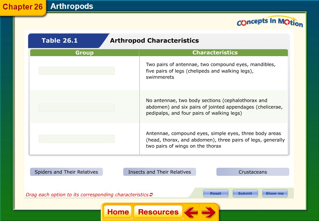 Chapter 26 Arthropods