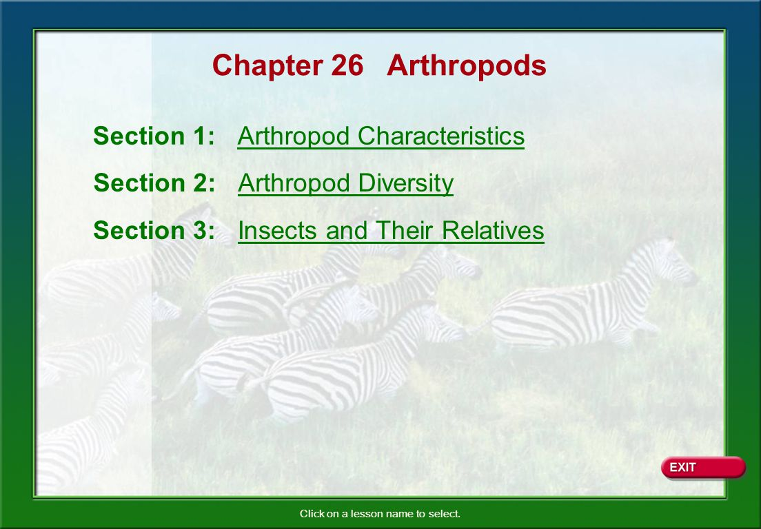 Chapter 26 Arthropods Section 1: Arthropod Characteristics