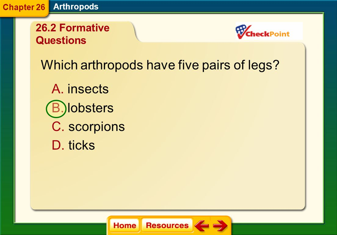 Which arthropods have five pairs of legs