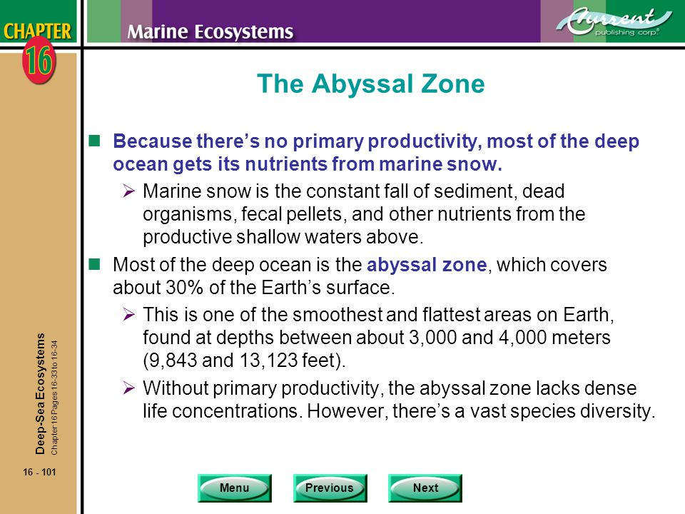 The Abyssal Zone Because there's no primary productivity, most of the deep ocean gets its nutrients from marine snow.