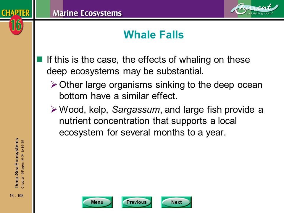 Whale Falls If this is the case, the effects of whaling on these deep ecosystems may be substantial.