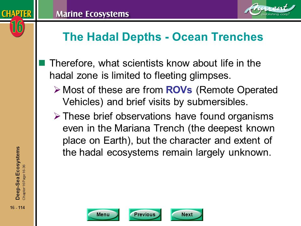 The Hadal Depths - Ocean Trenches