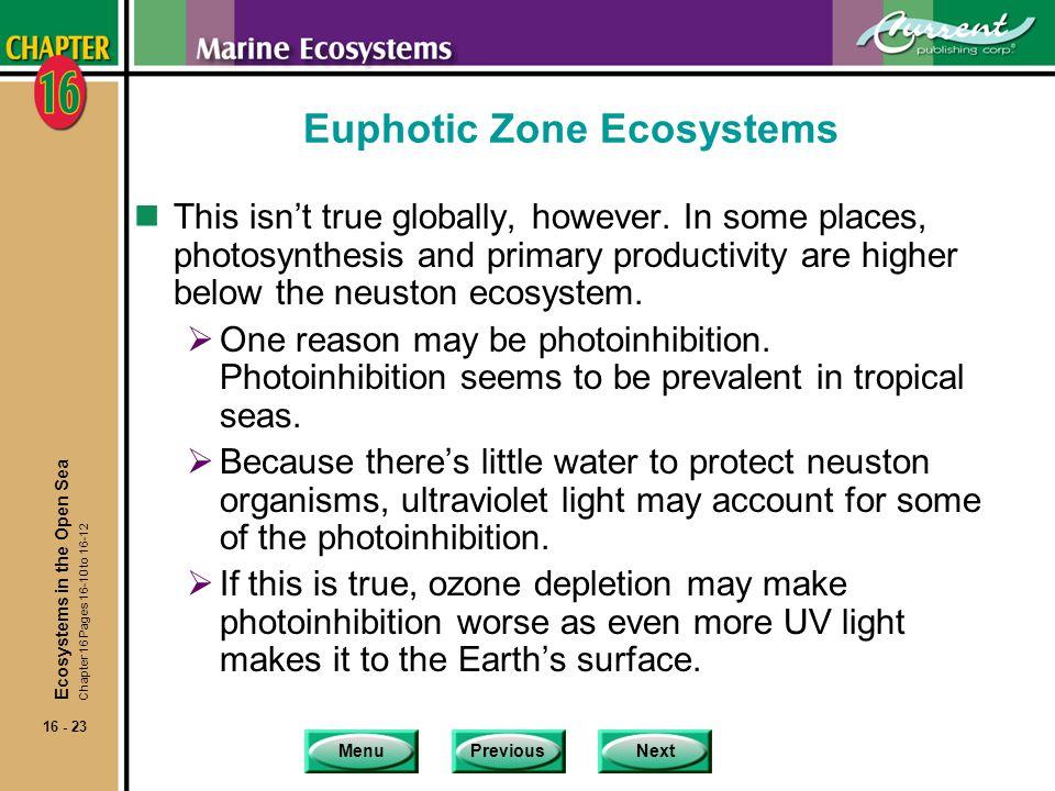 Euphotic Zone Ecosystems