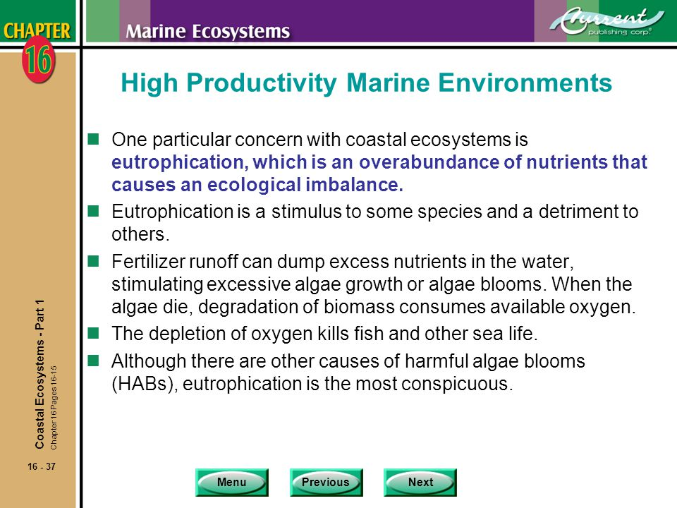 High Productivity Marine Environments