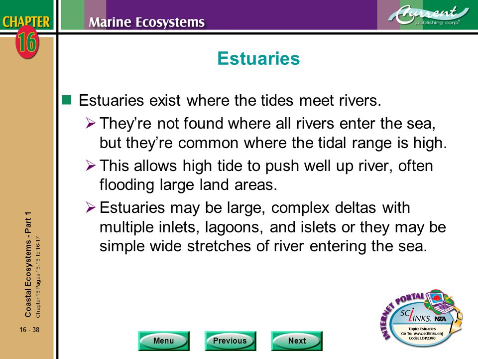 Estuaries Estuaries exist where the tides meet rivers.