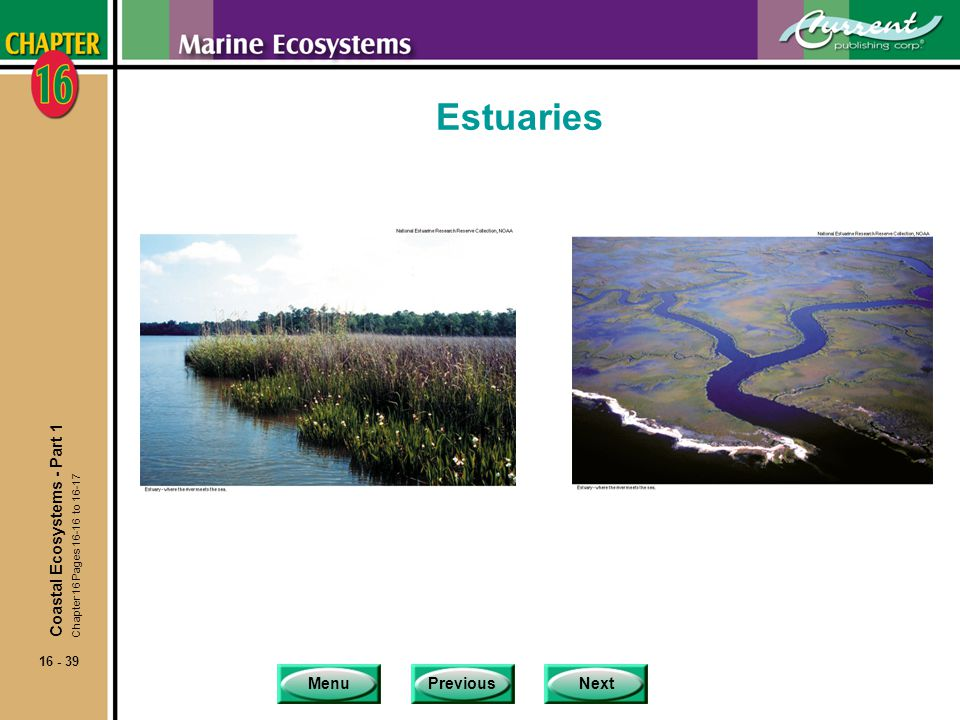 Estuaries Coastal Ecosystems - Part 1 Chapter 16 Pages 16-16 to 16-17