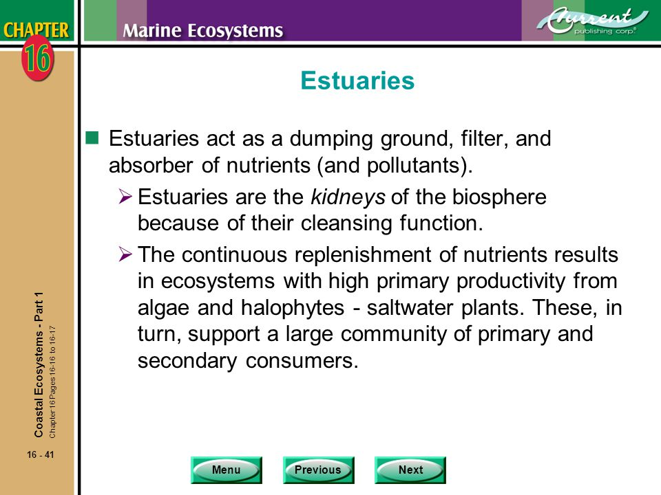 Estuaries Estuaries act as a dumping ground, filter, and absorber of nutrients (and pollutants).