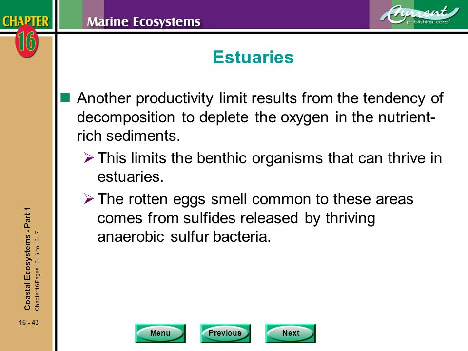 Estuaries Another productivity limit results from the tendency of decomposition to deplete the oxygen in the nutrient-rich sediments.