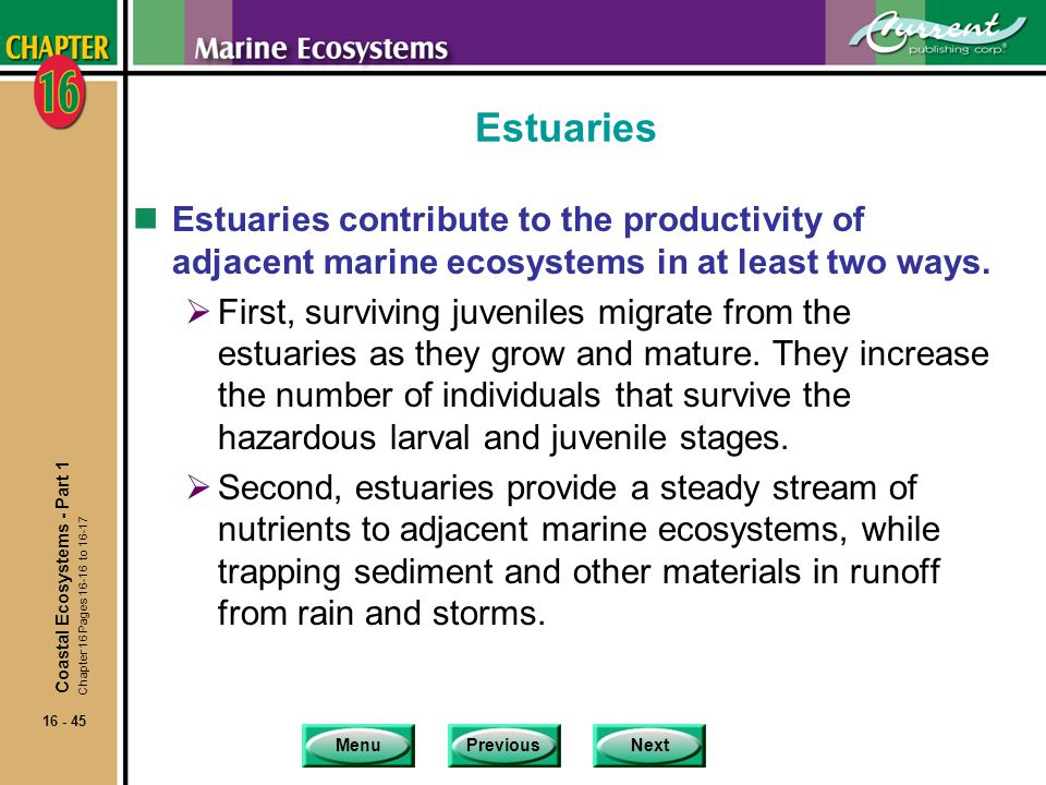 Estuaries Estuaries contribute to the productivity of adjacent marine ecosystems in at least two ways.