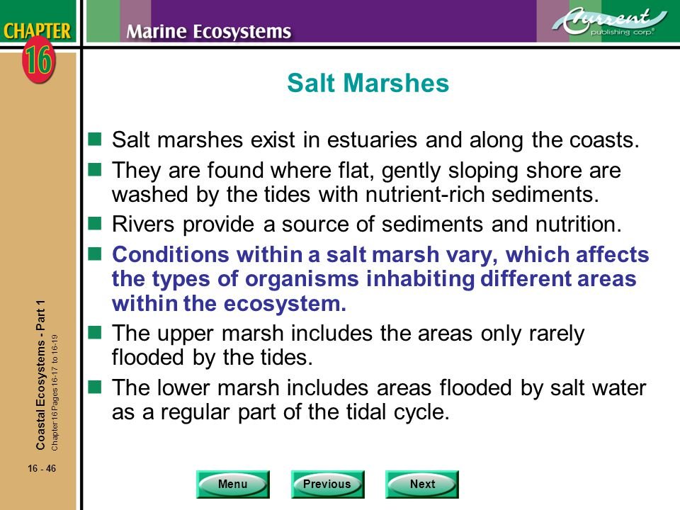 Salt Marshes Salt marshes exist in estuaries and along the coasts.