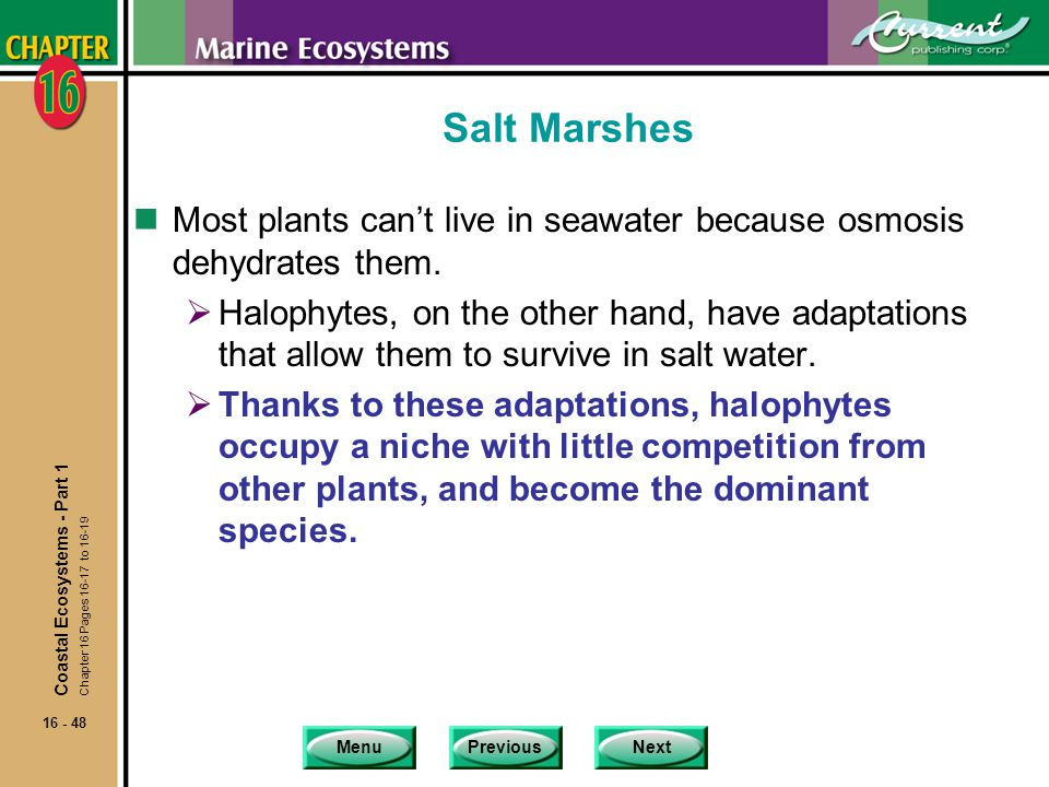 Salt Marshes Most plants can't live in seawater because osmosis dehydrates them.
