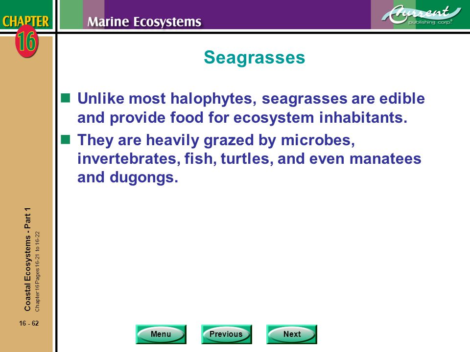 Seagrasses Unlike most halophytes, seagrasses are edible and provide food for ecosystem inhabitants.