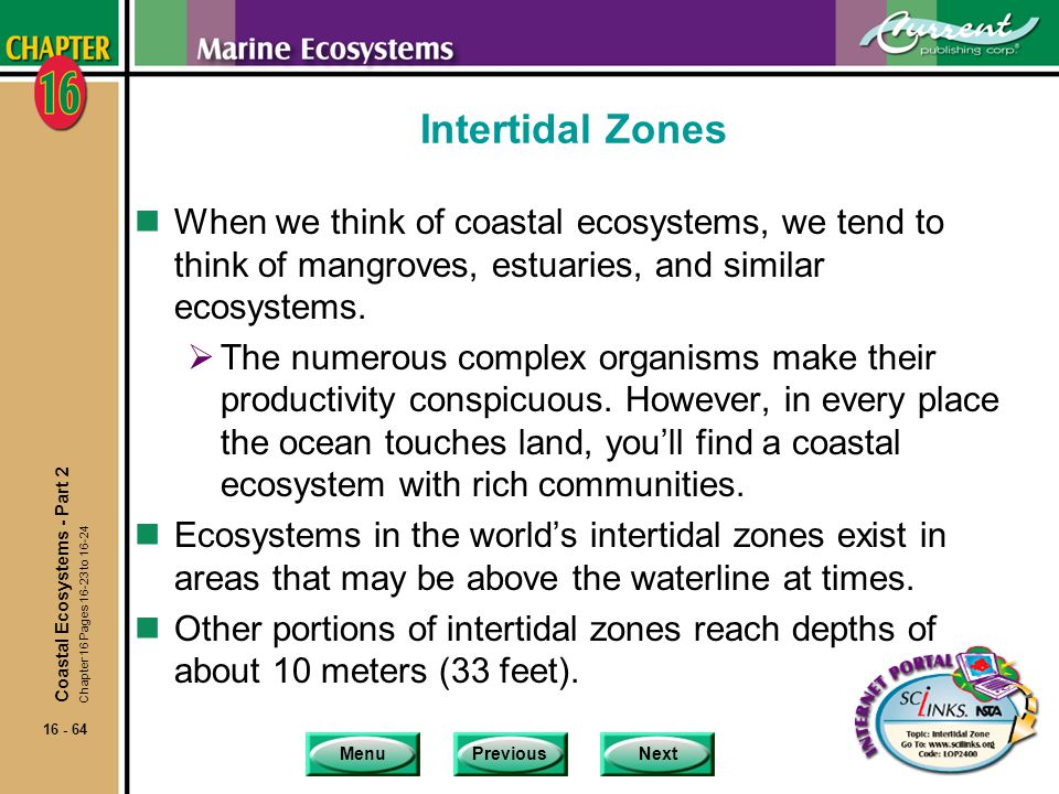 Intertidal Zones When we think of coastal ecosystems, we tend to think of mangroves, estuaries, and similar ecosystems.