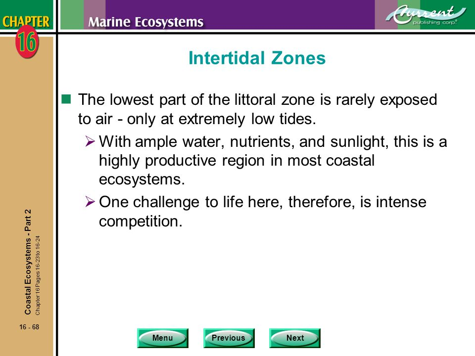Intertidal Zones The lowest part of the littoral zone is rarely exposed to air - only at extremely low tides.