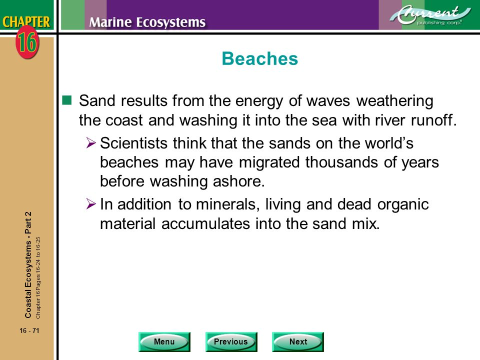 Beaches Sand results from the energy of waves weathering the coast and washing it into the sea with river runoff.