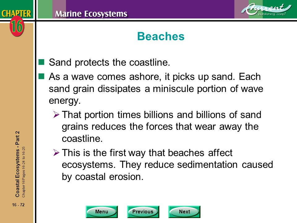 Beaches Sand protects the coastline.