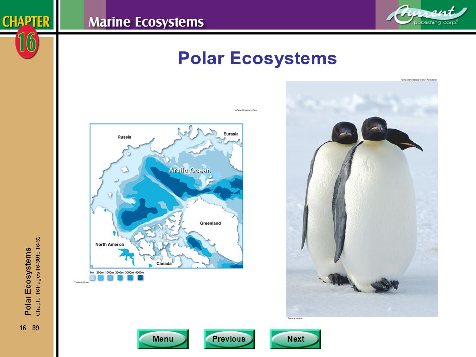 Polar Ecosystems Polar Ecosystems Chapter 16 Pages 16-30 to 16-32
